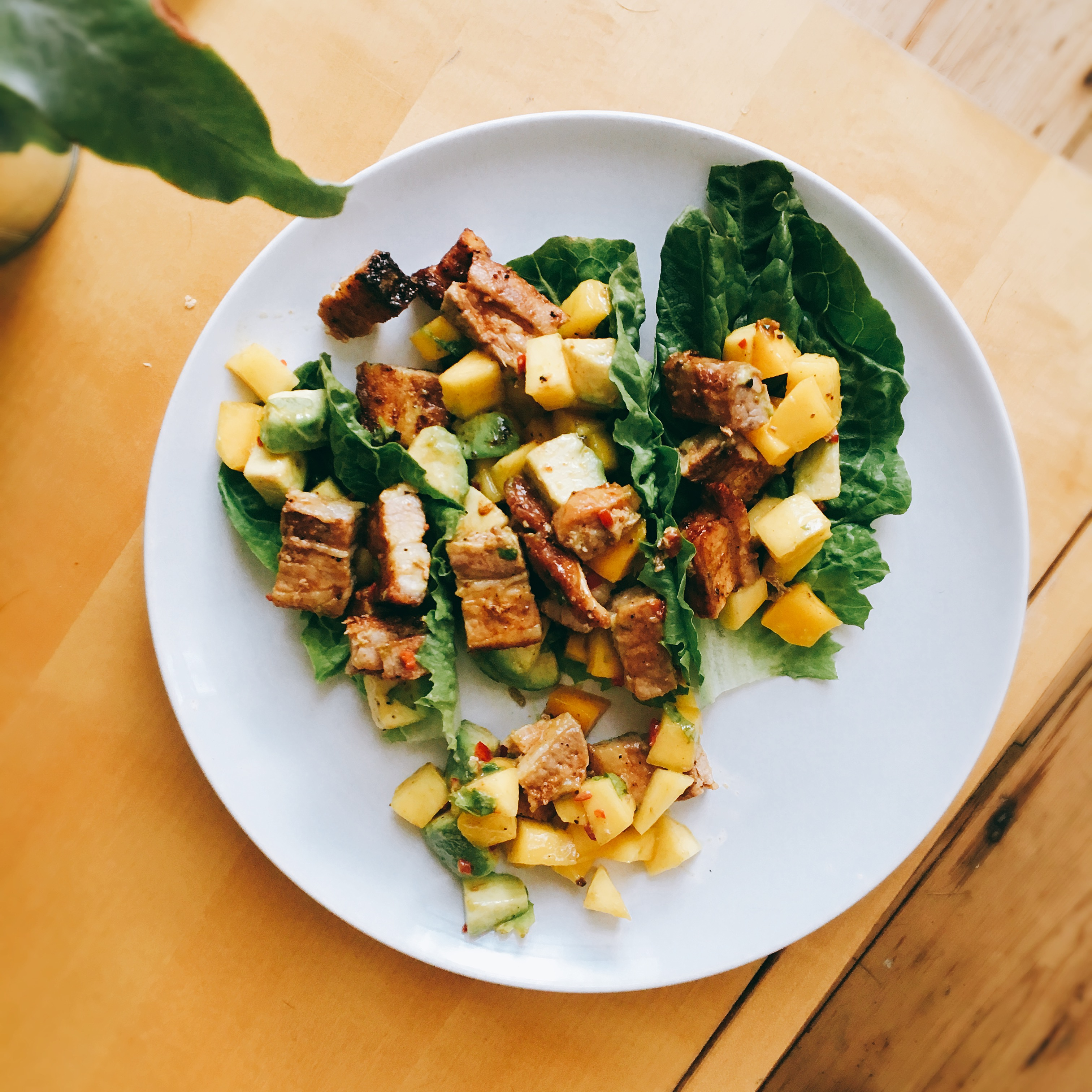 the wee food blogger© Whole30 Pork Tacos recipe